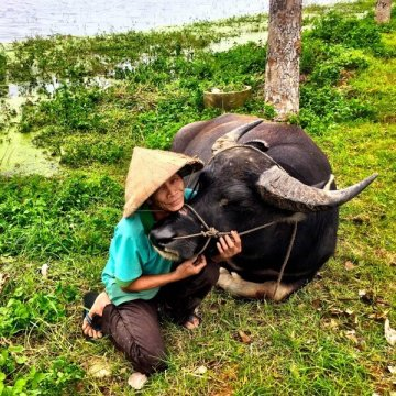 Country Image - Vietnam